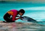 Дельфины и люди